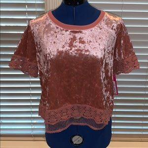 Velour Lace Blouse, Mauve, NWT, Medium